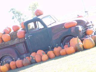 Truck_pumpkins